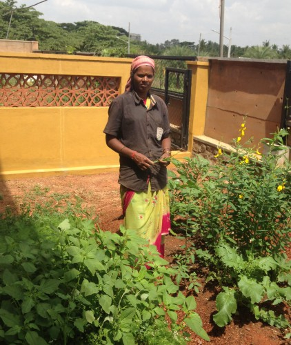 Lakshmi wastepicker to urban farmer