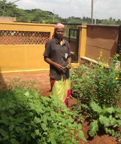 Lakshmi wastepicker to urban farmer